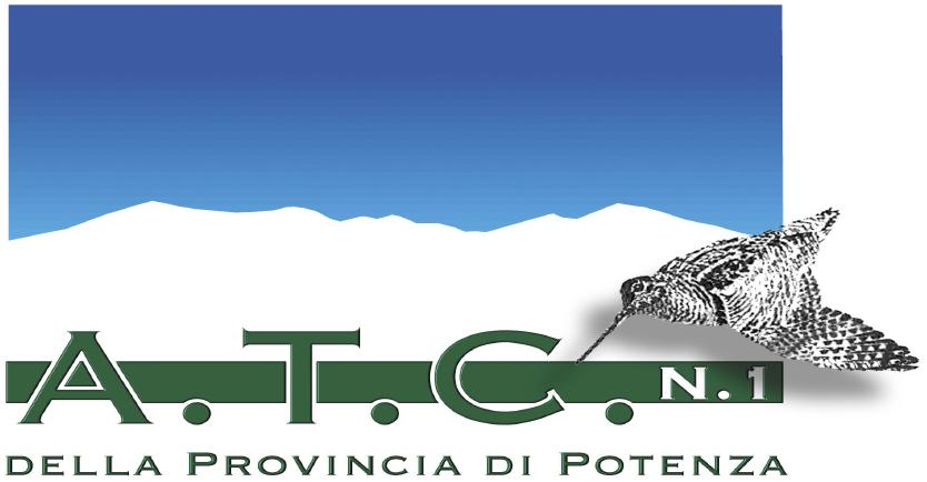 ATC1 POTENZA